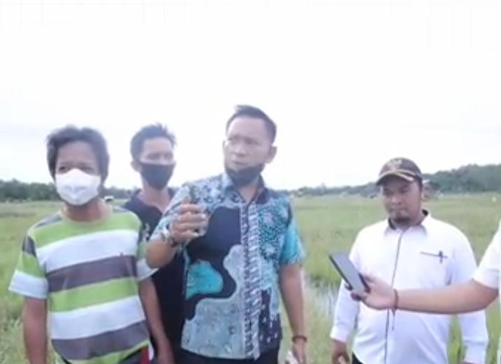 Herman Suhadi, S.Sos meninjau Sawah di Desa Banyu Asin