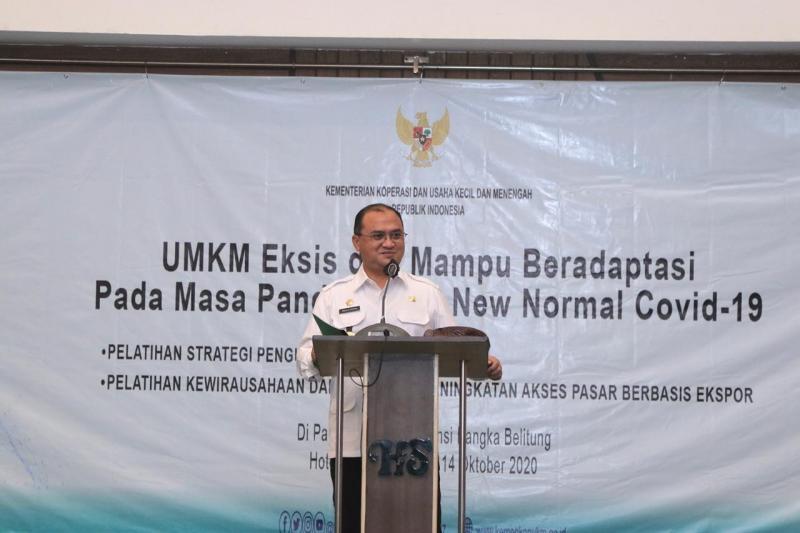 Gubernur Erzaldi Dorong UMKM Babel Untuk Ekspor Produk