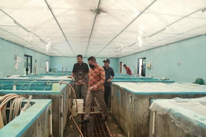 Kunjungi BBI Tanjung Rusa, Ketua DPRD Berpesan Agar Sigap Membaca Peluang