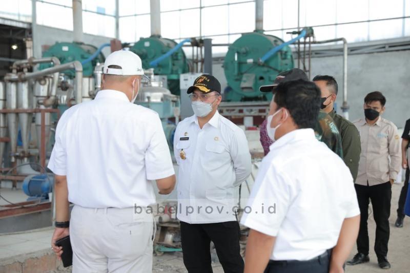 Serap Banyak Tenaga Kerja, Pembangunan Pabrik Tapioka di Belitung Terus Dapatkan Dukungan