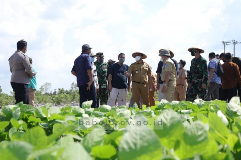 Sambut Budi Daya Kacang-Kacangan, Para Petani Ikuti Bimtek