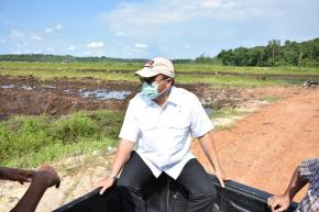 Gubernur Erzaldi Telusuri Penyebab Keracunan Padi di Sawah Batu Betumpang