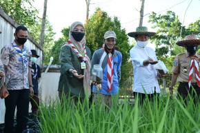 Kwarda Babel Tanam Sayur Organik Sebagai Antisipasi Ketahanan Pangan Paska Covid-19