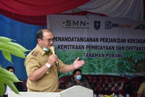 Gubernur Erzaldi Tanda Tangani Kerja Sama Kemitraan Tanaman Porang