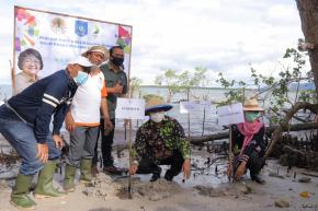 Gubernur Erzaldi Tanam Mangrove di Kelapa Kampit