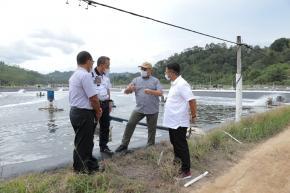 Bertahan Hingga 22 Tahun, Gubernur Erzaldi Kagumi Tambak Udang Vaname Indocom