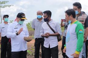 Gubernur Erzaldi Tanam Porang dengan Sistem Tumpang Sari Lada dan Kayu Pelawan
