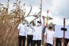 Nilai Tukar Petani Babel Tertinggi di Indonesia