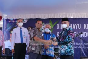 Gubernur Erzaldi Bina Potensi Tanaman Pinang