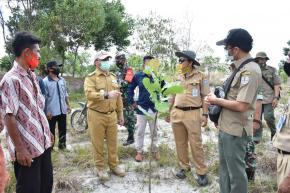 178 Hektar Lahan Ekstambang Berubah Jadi Lahan Jambu Mete