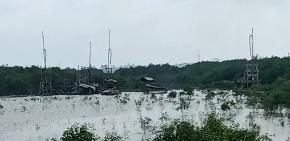 Tambang Inkonvensional Rajuk Kembali Aktif di Sungai Teluk Bayur